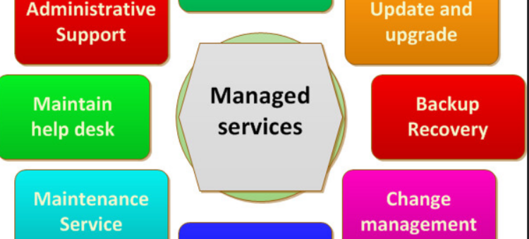 A Managed Service Provider (MSP)